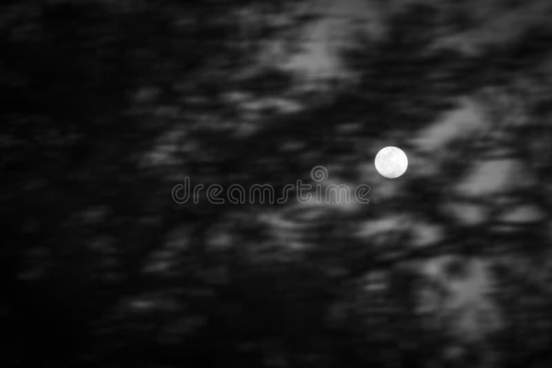 Download Ветви луны стоковое изображение. изображение насчитывающей ноча - 40585335