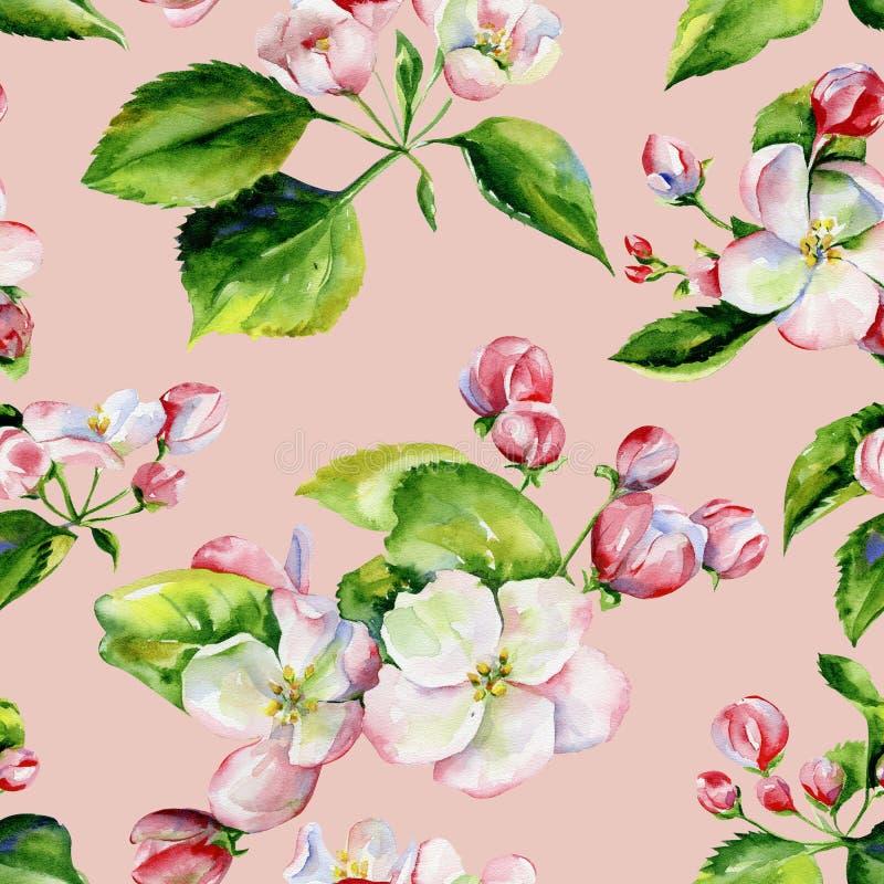 Ветви яблони и картина цветков безшовная иллюстрация вектора