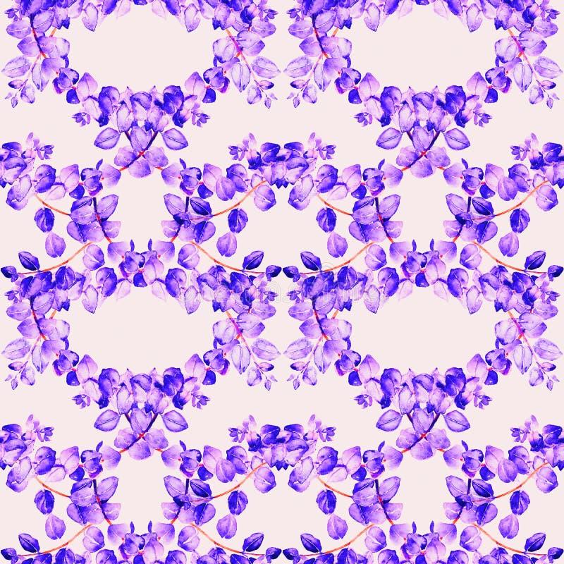 Ветви tetragona эвкалипта с пурпурн-фиолетовыми листьями установили, покрашенная рукой иллюстрация акварели, безшовный дизайн кар бесплатная иллюстрация