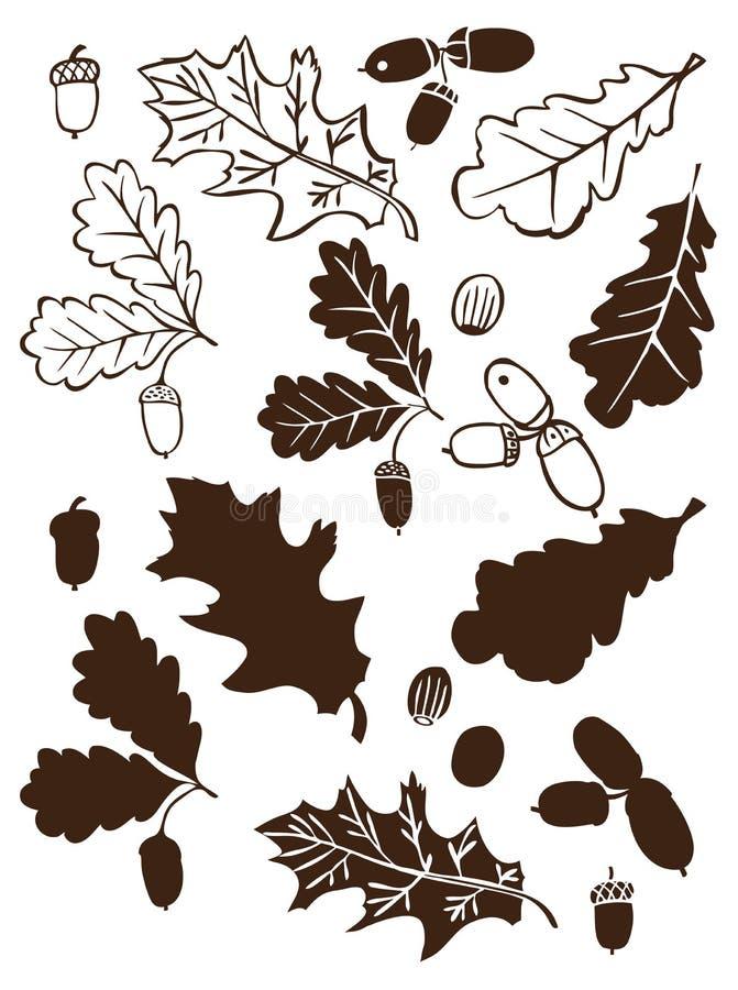 Ветвь дуба и жолудей бесплатная иллюстрация