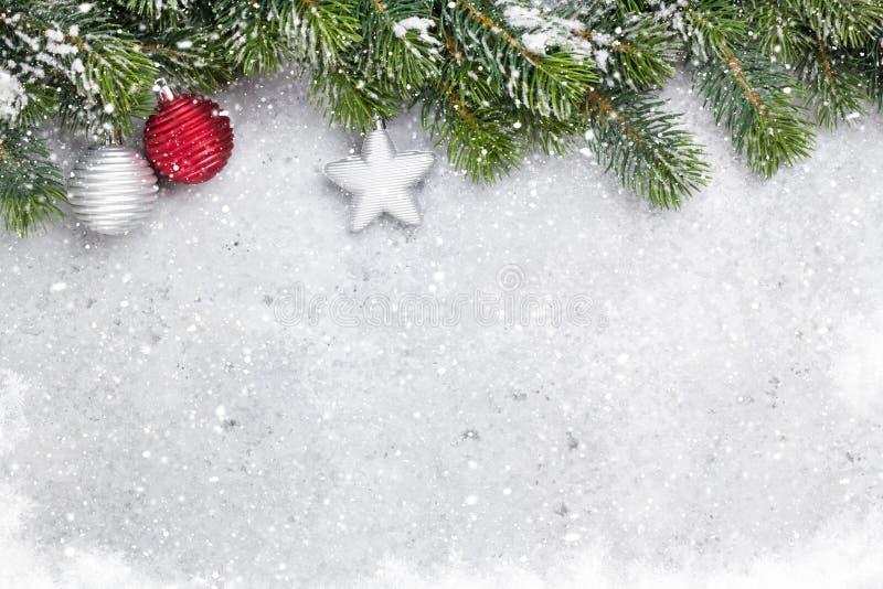 Ветвь ели рождества покрытая карточкой снега стоковое изображение