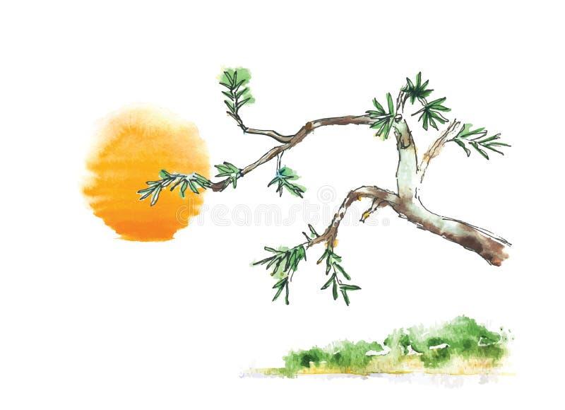 Ветвь дерева можжевельника против солнца, вектор иллюстрация штока