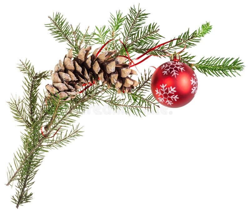 Ветвь елевого дерева с конусом и красным шариком стоковая фотография rf