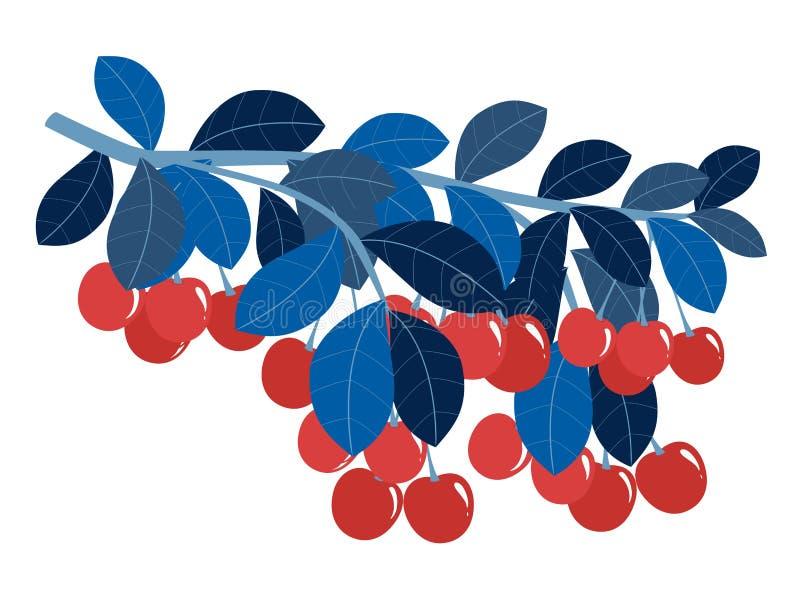 Ветвь иллюстрации вектора сладкой вишни плоско бесплатная иллюстрация