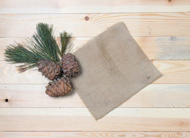 Ветвь кедра с конусами на винтажных тканях на деревянной текстуре стоковая фотография