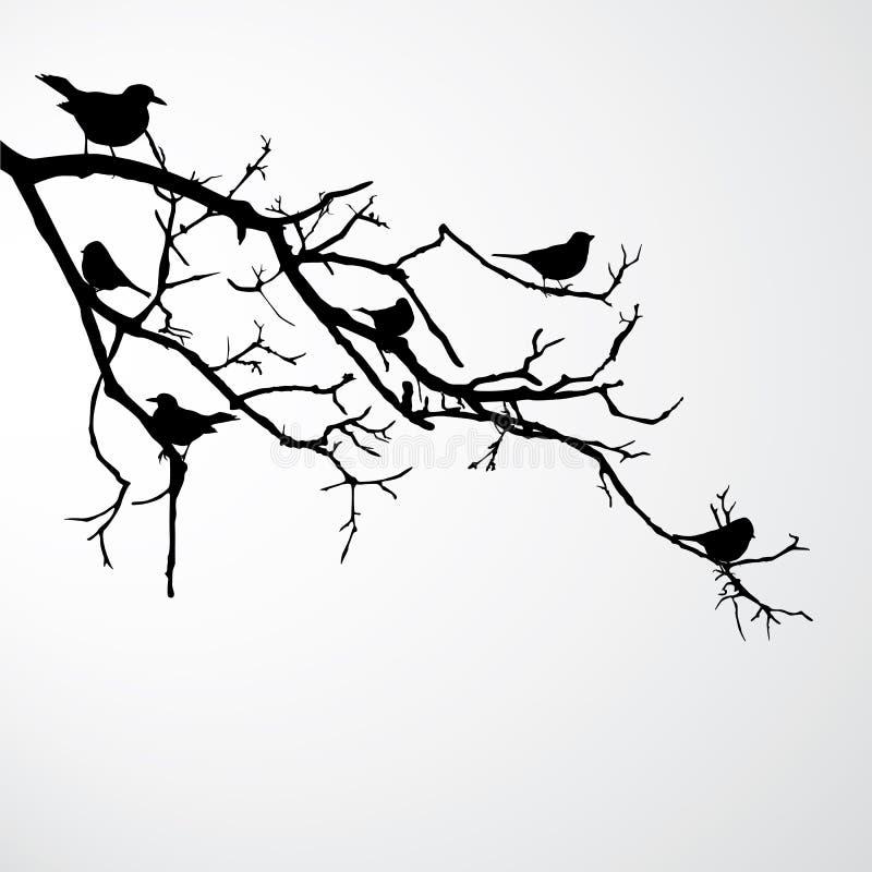 ветвь птиц иллюстрация штока