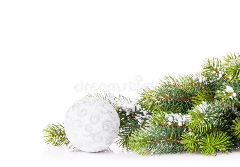 Ветвь рождественской елки с снегом и безделушкой стоковая фотография