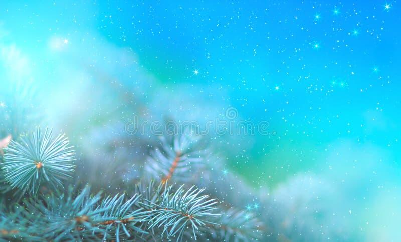 Ветвь сосны рождества в лучах светлого конца вверх, голубой предпосылки с отражениями звезд и красивого bokeh фонариков иллюстрация штока