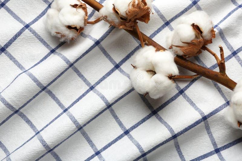 Ветвь с цветками хлопка на ткани, взгляд сверху стоковая фотография rf