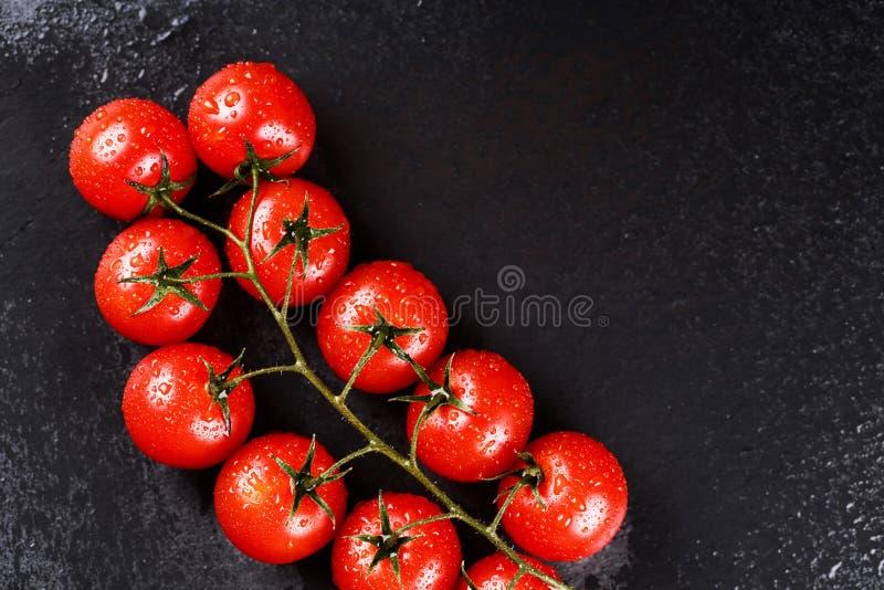 Ветвь томатов вишни стоковые изображения