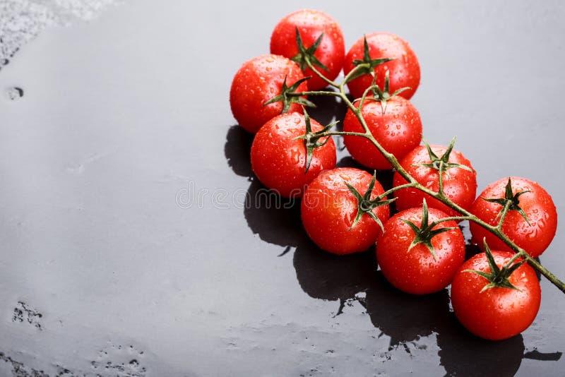 Ветвь томатов вишни стоковое изображение