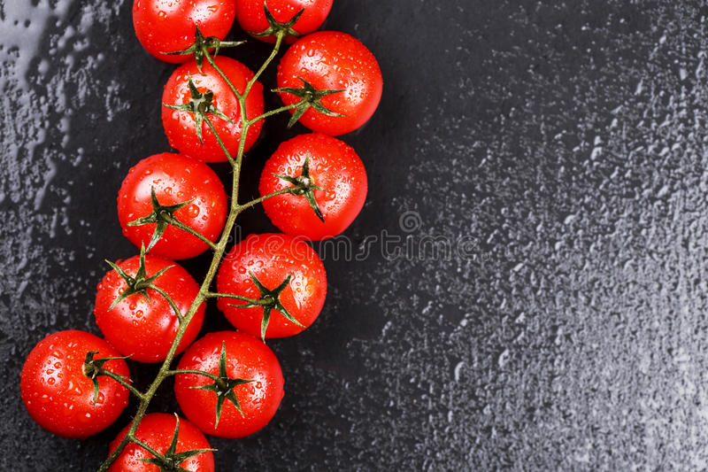 Ветвь томатов вишни стоковое фото