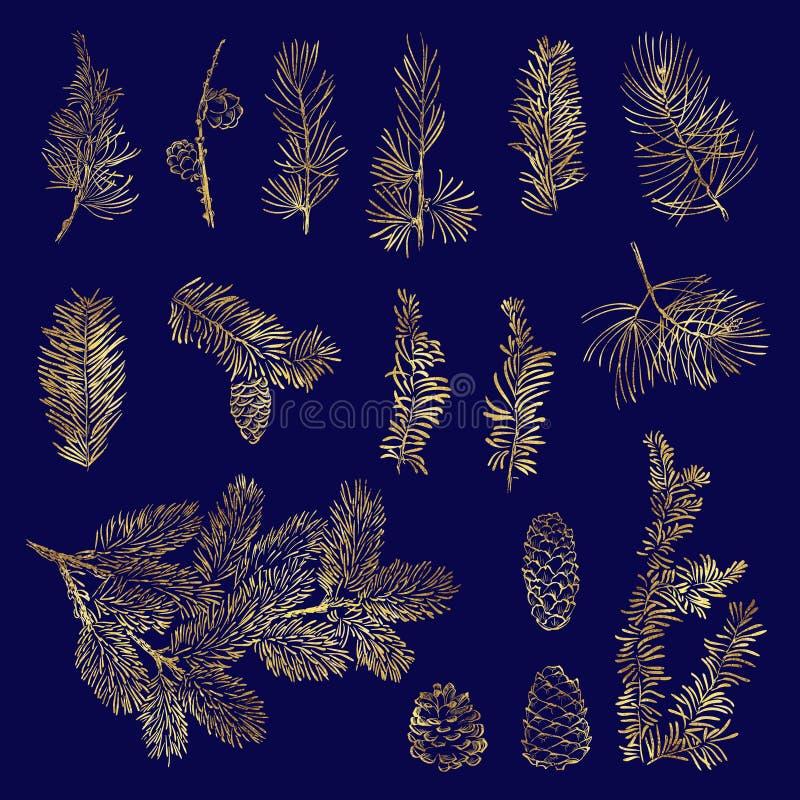 Ветвь установленного рождества вектора золотая иллюстрация штока