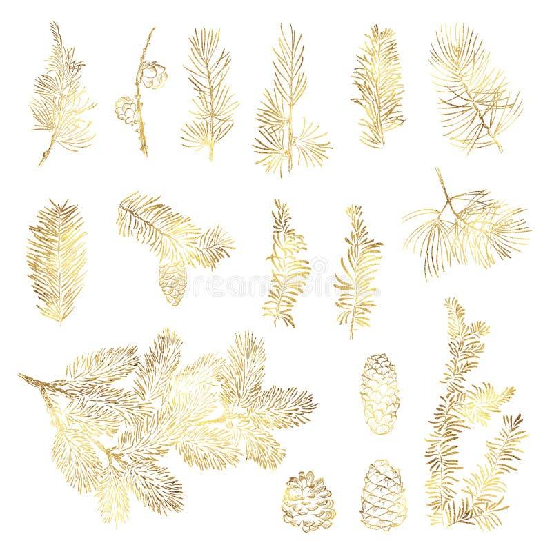 Ветвь установленного рождества вектора золотая иллюстрация вектора