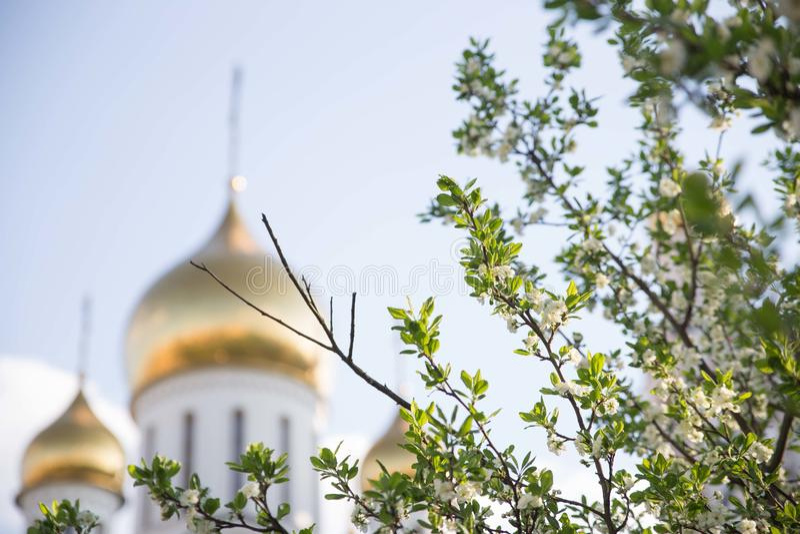 Ветвь яблони и церков Ortodox на предпосылке, мягком фокусе стоковая фотография