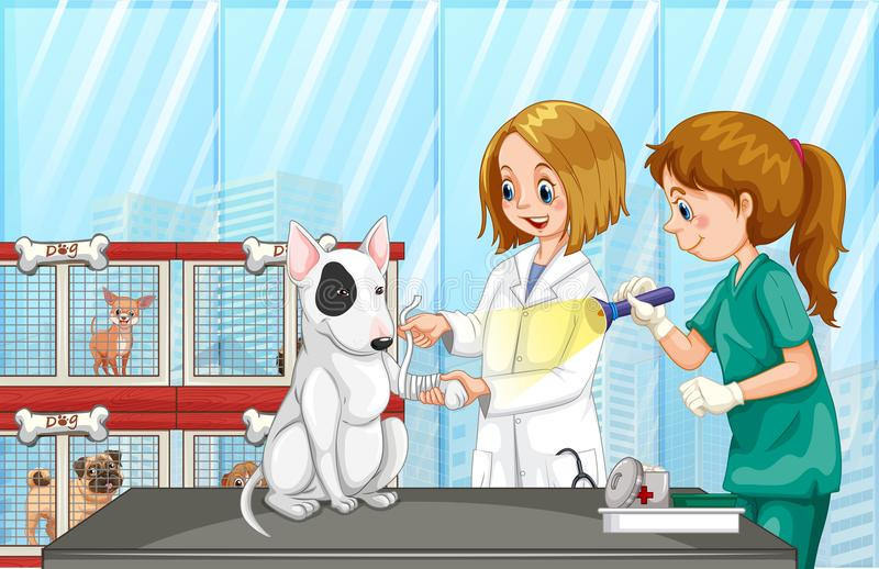 Ветеринар помогая собаке на клинике бесплатная иллюстрация