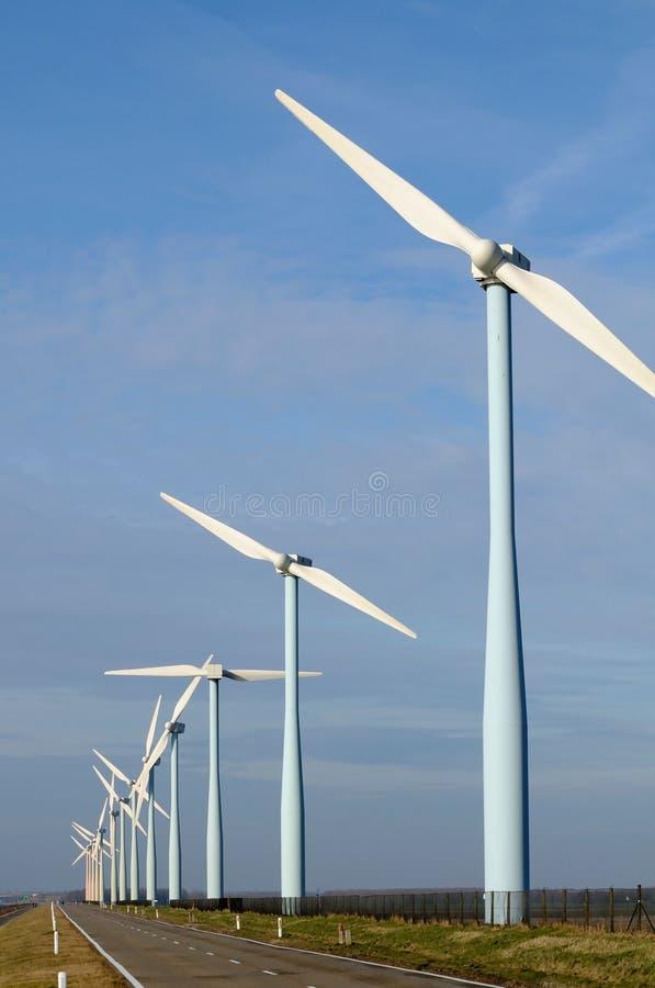 ветер парка стоковая фотография