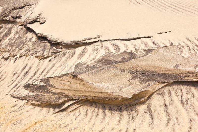 ветер структур форм дюн пляжа стоковое изображение rf
