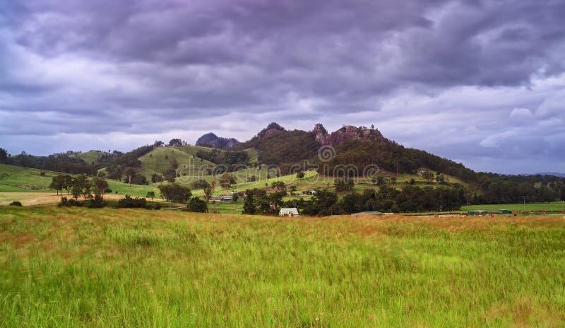 Ветер травы поля фермы BTops стоковое изображение