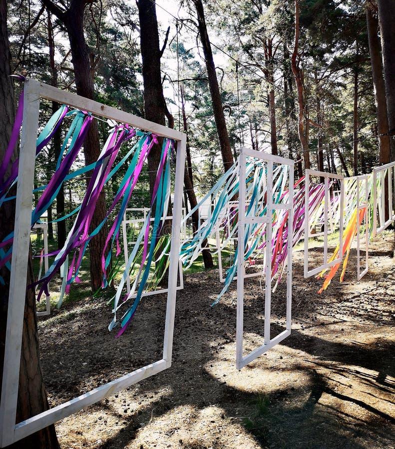 Ветер цветов стоковые фотографии rf