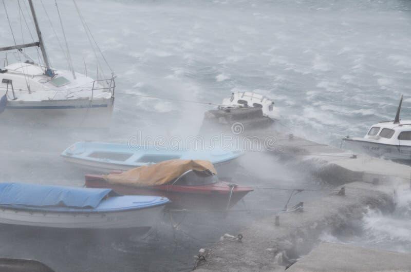 ветер шторма стоковое фото