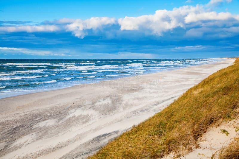 Ветреная осень на Балтийском море стоковые изображения rf