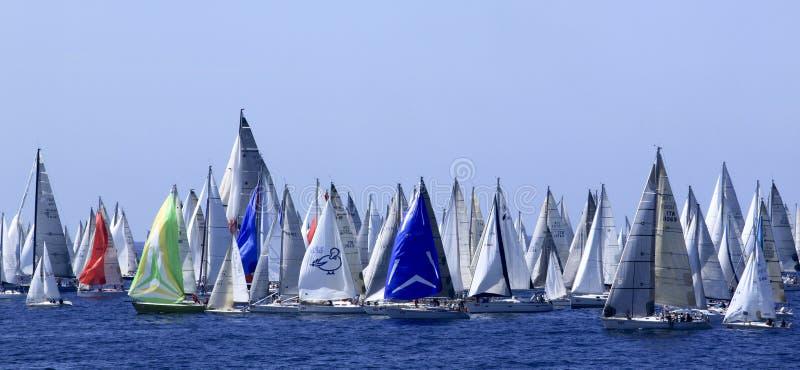 ветрило 2010 regatta millevele стоковое фото rf
