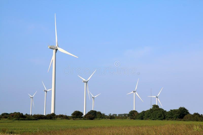 Ветровая электростанция Essex на болотах стоковые фотографии rf