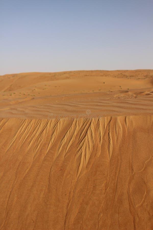 Ветровая эрозия в песках Wahiba, Оман стоковые фото