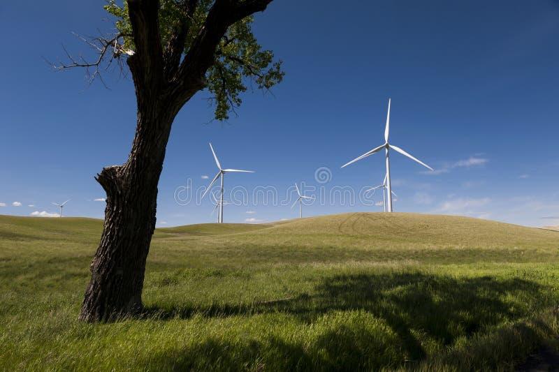Ветровая электростанция Palouse стоковое фото