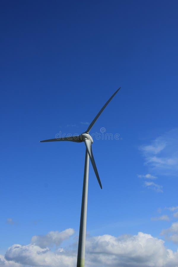 Ветротурбина производя электричество стоковое изображение rf