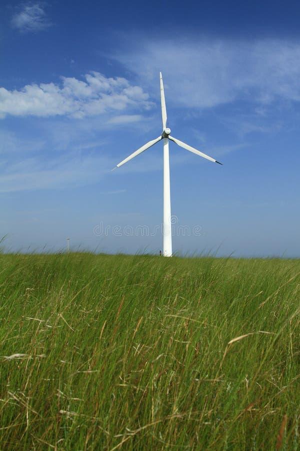 Ветротурбины в фарфоре стоковые фотографии rf
