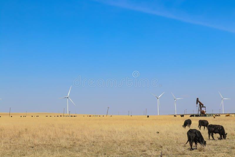 Ветротурбины и нефтяная скважина и скотины все пасти в одном поле против голубого неба стоковое фото rf
