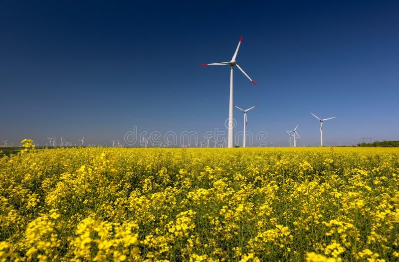 Ветротурбины обрабатывают землю стоковое изображение