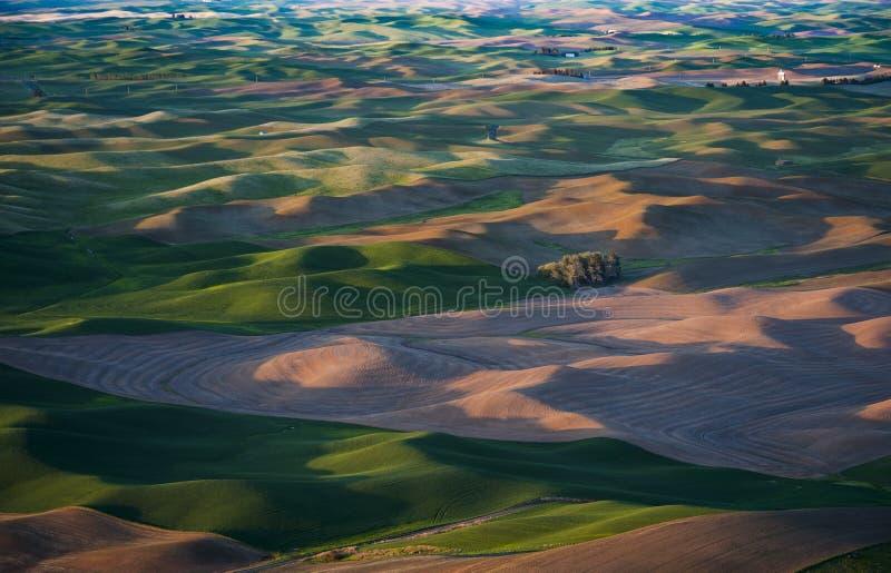 Ветротурбины Palouse стоковые изображения