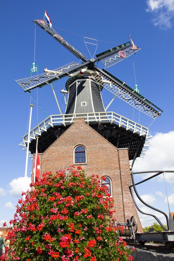 Ветрянка в Гарлем, Голландия стоковые фото
