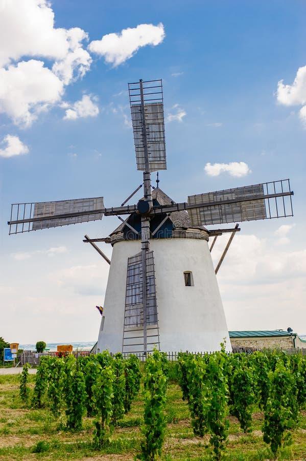 Ветрянка в Retz, Нижней Австрии стоковое фото rf