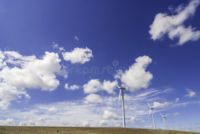 Ветрянка на луге стоковое изображение rf