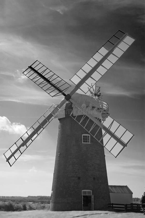 ветрянка портрета стоковые изображения