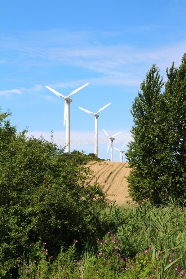 4 ветрянки в ряд стоковое изображение