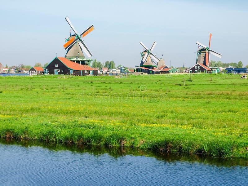 Ветрянки в этнографическом под открытым небом музее Zaanse Schans, Netherl стоковые фото