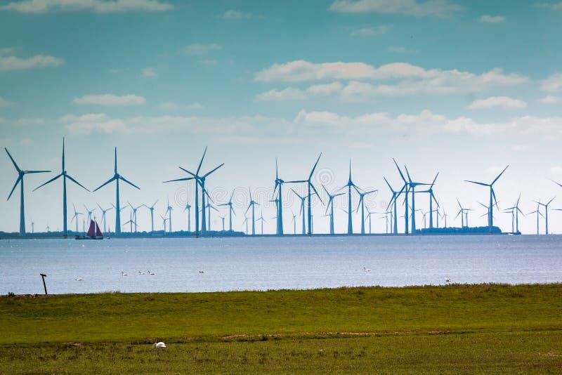 Ветрянки на озере вызвали IJsselmeer стоковое изображение rf