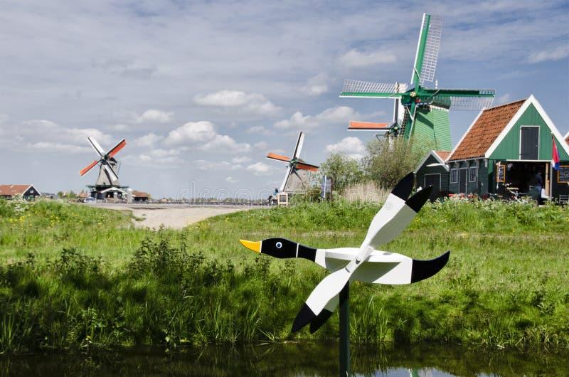 Ветрянки на Zaanse Schans, Амстердаме, Голландии стоковые фото