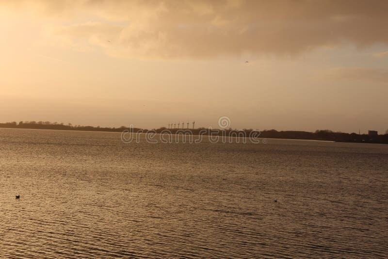 Ветрянки Oldschool Голландии стоковые фотографии rf
