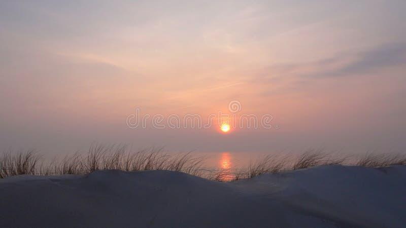 Вечер весны на дюнах, около Балтийского моря стоковые фотографии rf