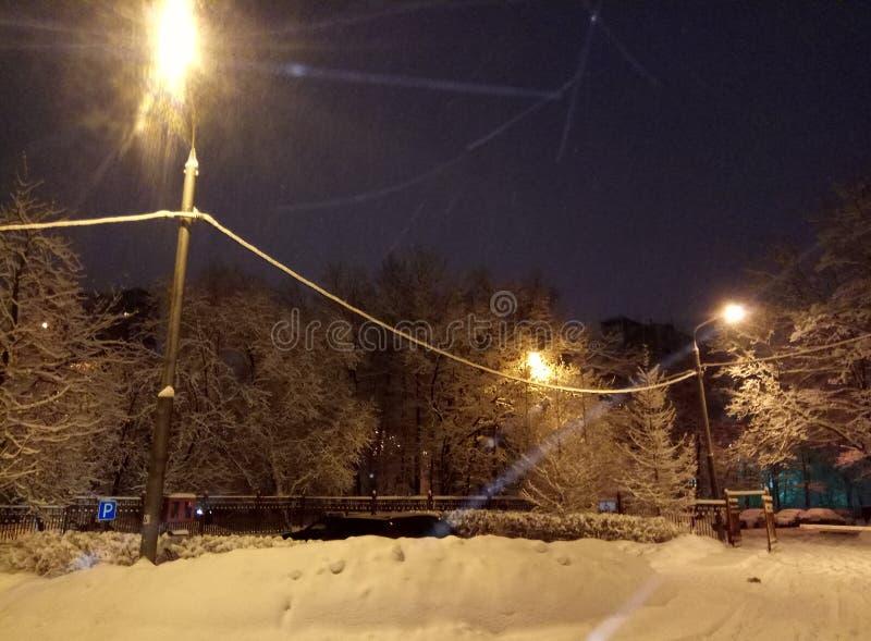 Вечер зимы в городе Свет фонарика на снежный падать деревьев Обои предпосылки стоковая фотография rf