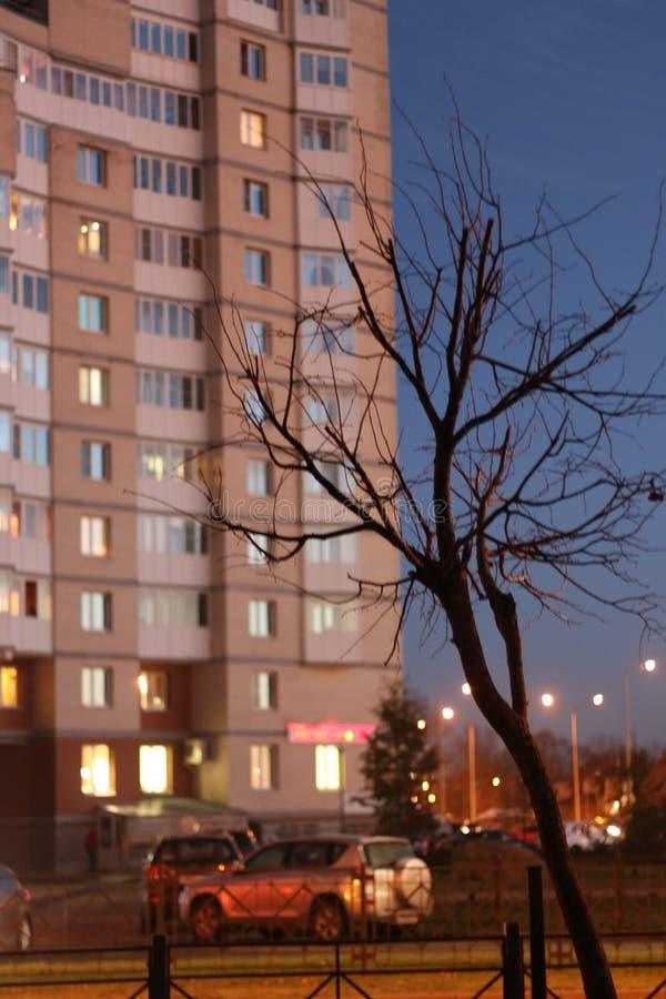 Вечер осени в городе стоковое изображение rf