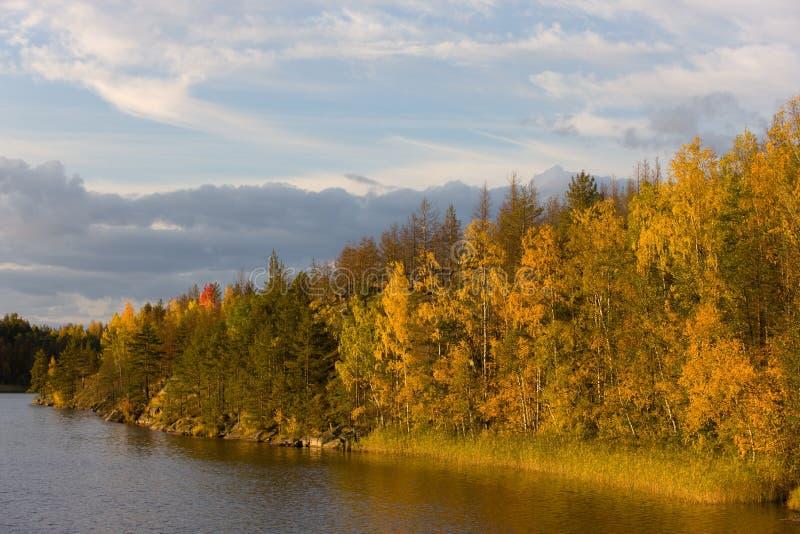 вечер осени солнечный стоковое изображение rf