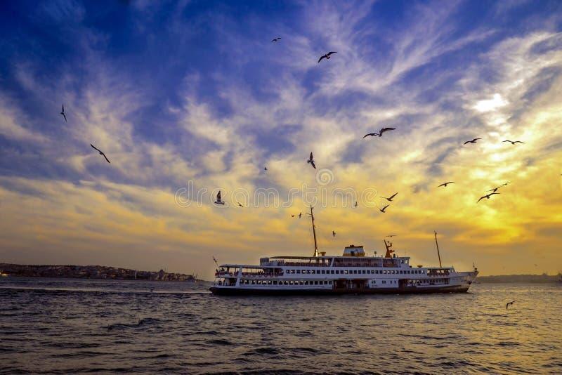 Вечер Стамбула Bosphorus, паром захода солнца и чайки стоковые изображения