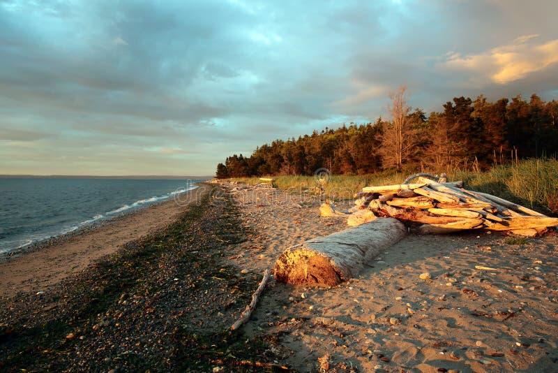 Вечер overcast на пляже стоковые изображения